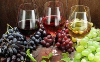 Защищает ли алкоголь от радиации: миф или реальность, ответы специалистов
