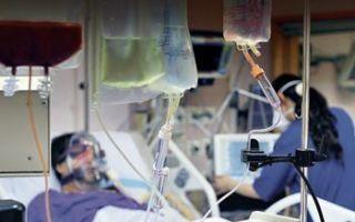 Можно ли после химиотерапии пить спиртное? влияние алкоголя на организм человека, отзывы врачей