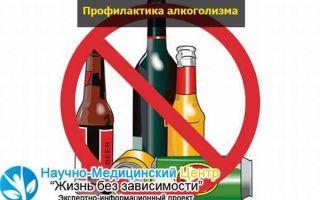 Подростковый алкоголизм — причины и профилактика зависимости у несовершеннолетних
