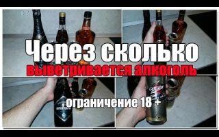 Сколько держится алкоголь в моче — таблица вывода спирта, эффективные методы очищения, советы врачей