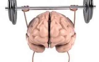 Восстановление мозга после алкоголизма — как возобновить нормальную работу нервной системы