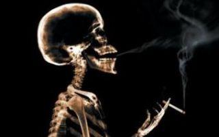 Сколько никотин держится в крови — влияние и особенности очищения организма