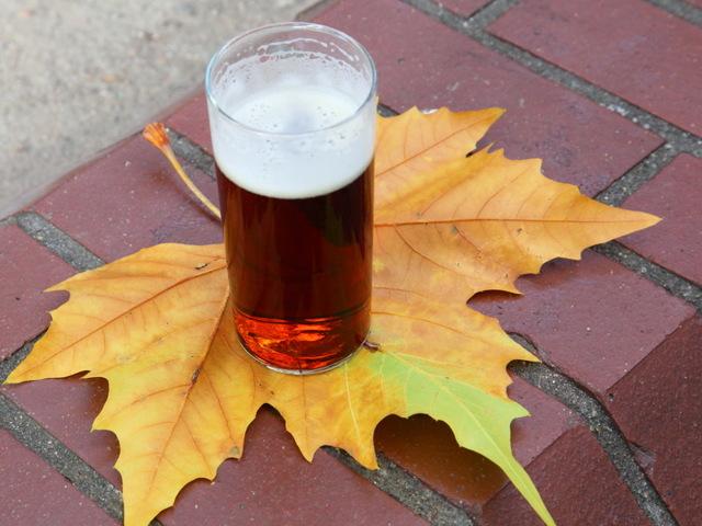 За сколько дней до сдачи крови нельзя пить алкоголь? Время вывода этилового спирта из организма человека