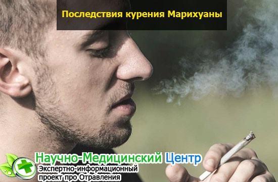 Последствия употребления марихуаны: влияние на организм человека, основные симптомы