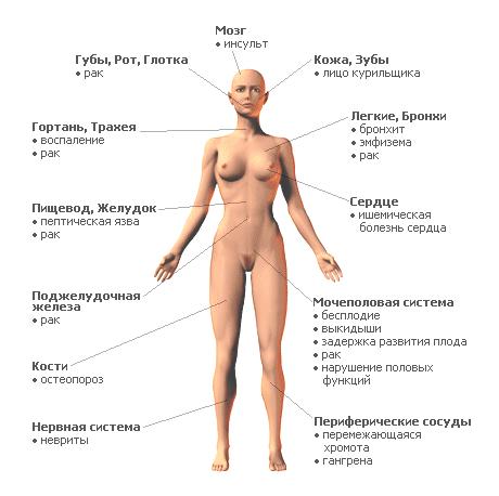 Никотин: влияние на организм, возможные последствия и положительные свойства