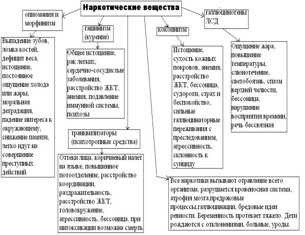 Наркотические вещества: классификация, список видов и механизм влияния