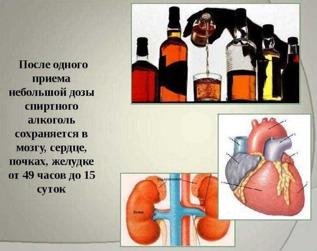 Бросил пить — Что происходит с организмом, когда бросаешь пить алкоголь?