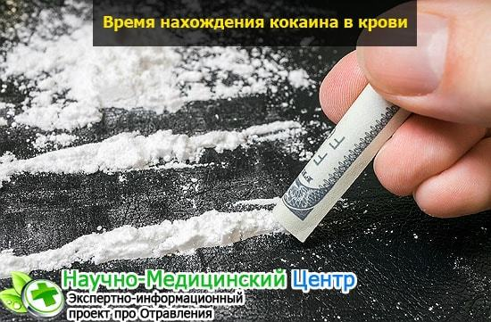 cколько держатся наркотики в крови и моче? Факторы и способы ускорения вывода