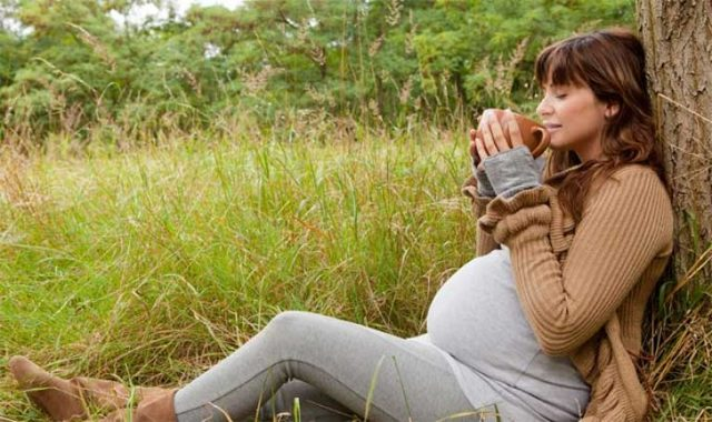 Грушанка. Лечебные свойства и противопоказания в гинекологии для женщин, мужчин, в народной медицине. Отзывы, как принимать