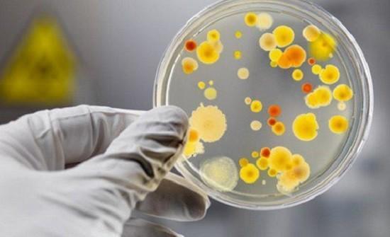 Герпетическая ангина у детей. Лечение антибиотиками, Ацикловиром, народными средствами. Как выглядит, фото горла, симптомы, инкубационный период, виды, причины