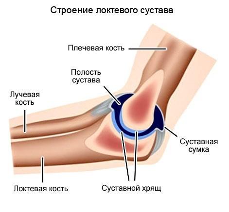 нимагу!! болят локти рук при нагрузке информация