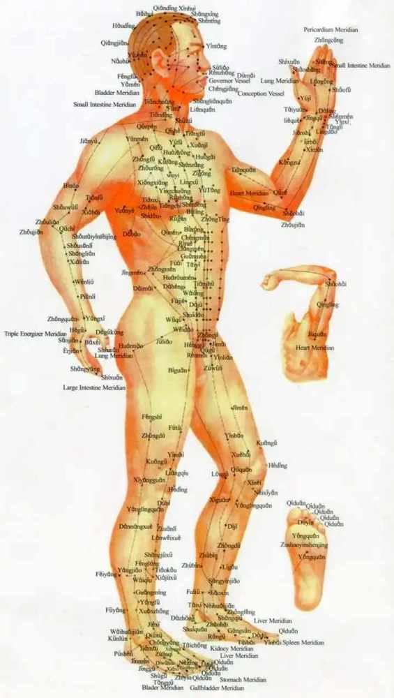 Иглоукалывание. Польза и вред при грыже поясничного отдела позвоночника, остеохондрозе, для похудения. Отзывы врачей, количество процедур, цена