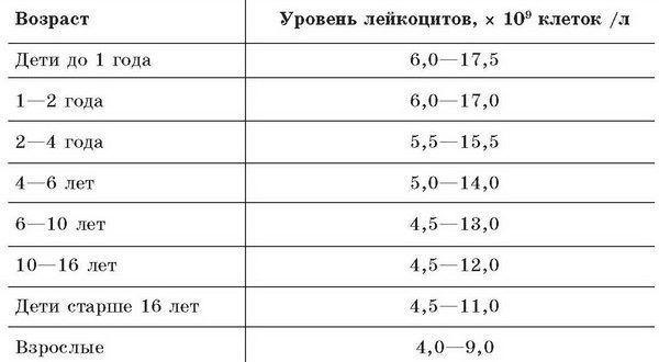 Мазок на флору у женщин. Норма, таблица, расшифровка лейкоциты, эритроциты, инвитро, кокки, что показывает при беременности